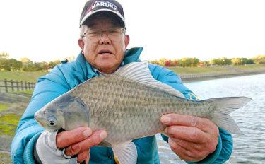 【関西】初釣りオススメ釣り場3選:野池のヘラブナ釣り編