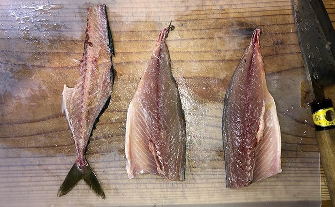 【釣果レシピ】サバのすき焼き:甘辛味が脂の乗った身と相性抜群
