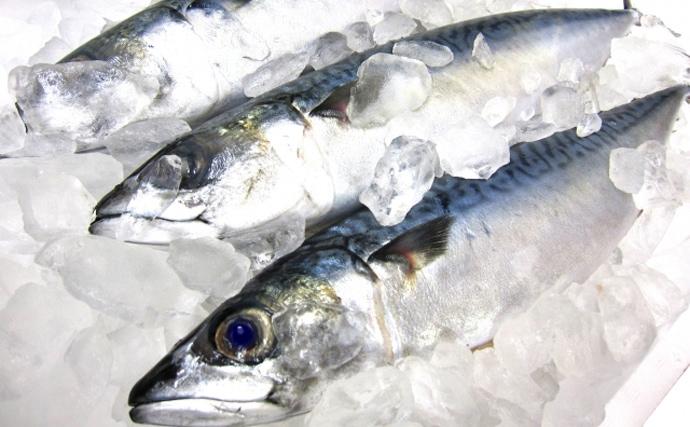 【東日本編】2月が旬の海の幸5選 1年でたった30日しか獲れないカニ