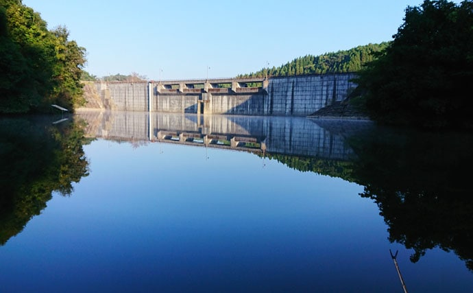 ヘラブナが滅びゆく『瓜田ダム』で価値ある2枚 アタリは日に1度有るか無いか