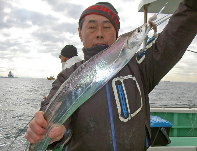東京湾の浅場でドラゴン級タチウオが好調 脂の乗りも抜群【鴨下丸】