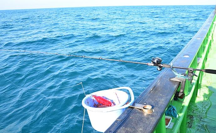 外房ハナダイ釣りで40cm含み本命連発 全員クーラー満タン【増栄丸】