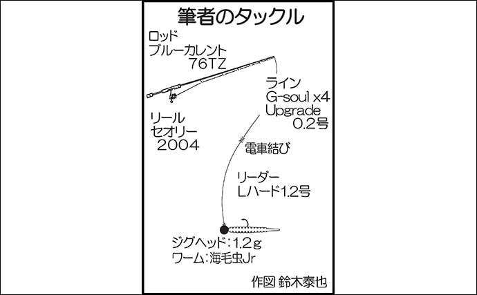 朝マヅメのアジングで26cm頭に本命30尾 メバル入れ食いも【新宮漁港】