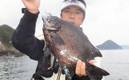 寒い冬でも狙えるイシガキダイ 宙釣りで1.7kg本命手中【上甑島】