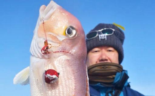【三重&福井】沖釣り最新釣果 タイラバで51cm巨大アマダイなど