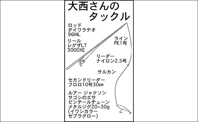 ショアジギングで回遊中のサゴシを狙い撃ち 53cm頭に3匹【福井】