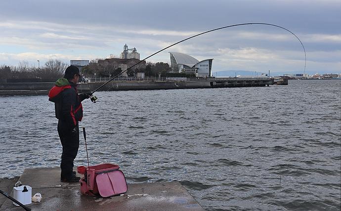 冬の名古屋港フカセ釣り攻略方法 『ハワセ誘い釣り』を活用しよう