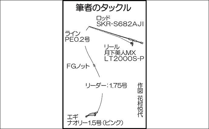 ターゲットは極小イカ 『ヒイカエギング』盛期到来で23尾【箱崎埠頭】