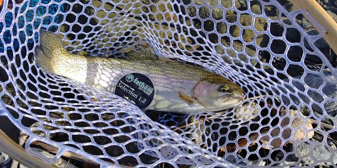 冬の管理釣り場で釣り×BBQ 釣果は燻製&塩焼きで【芥川マス釣り場】