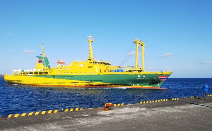 フカセ釣りで46cm頭にメジナ40尾 堤防から良型連発【三宅島】