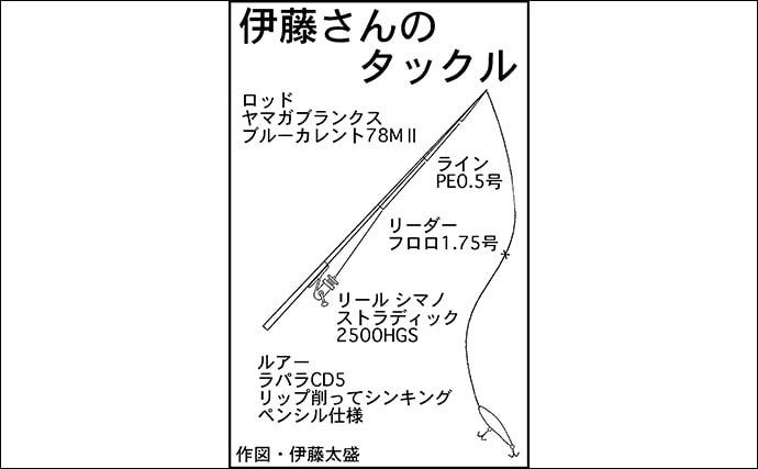 『メバルプラッキング』ゲームで33cm尺メバル 磯際でヒット【和歌山】