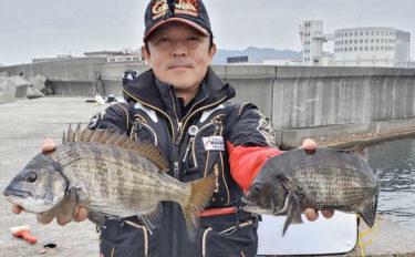 真冬の波止フカセ釣りで40cm級チヌ3尾手中【長田港東堤防】
