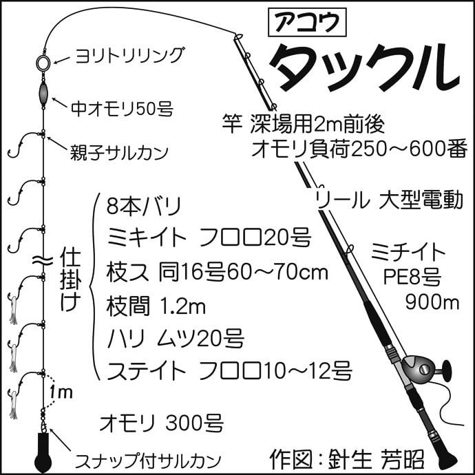 相模湾『LT深場』で2.4kg頭にアコウ2尾 狙うは「提灯行列」