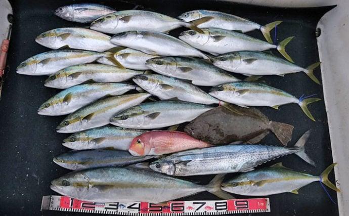 ジギングで青物入れ食い 90cm級ヒラマサにヒラメやアマダイも【長崎】