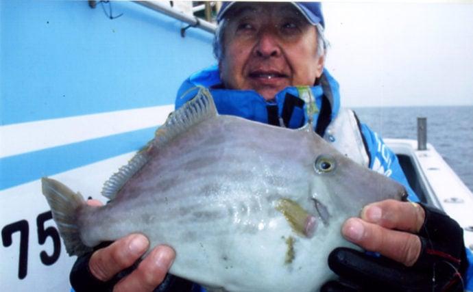 船カワハギ釣りで32cm肝パン浮上 合計20尾の満足釣果【釣吉丸】