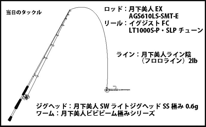 メバリングで25cm級メバル 潮流と産卵行動の予想が的中【須磨浦漁港】