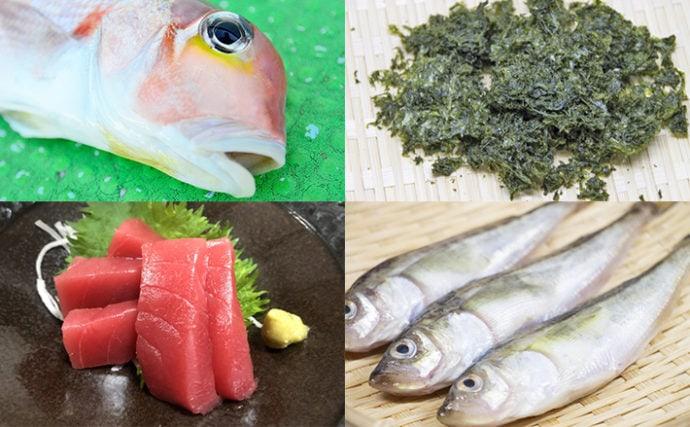 【西日本編】2月に旬を迎える海の幸4選 クロマグロ養殖と言えば九州