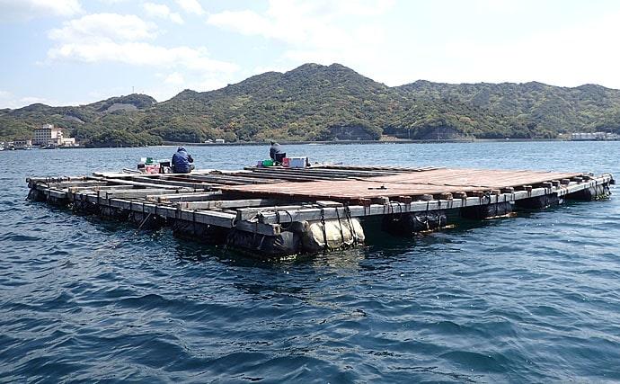 本番迎えた『筏カレイ釣り』で手軽に大型狙い 2つの釣法を解説【淡路島】