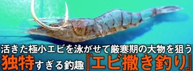活きた極小エビを泳がせて厳寒期の大物を狙う『エビ撒き』釣り徹底攻略