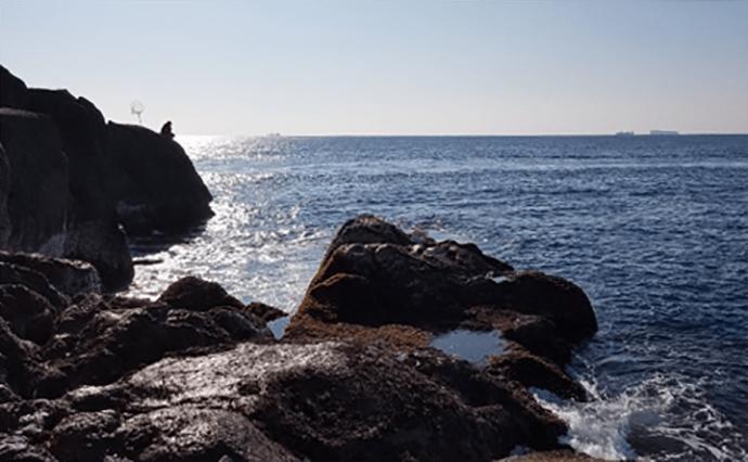 『串本磯グレ釣り大会』参戦レポ 36.6cm仕留めて4位入賞【和歌山】