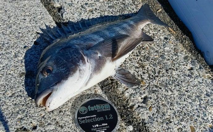 サーフからフカセでチヌを狙う『渚釣り』で本命浮上 厳寒期の攻略法3選