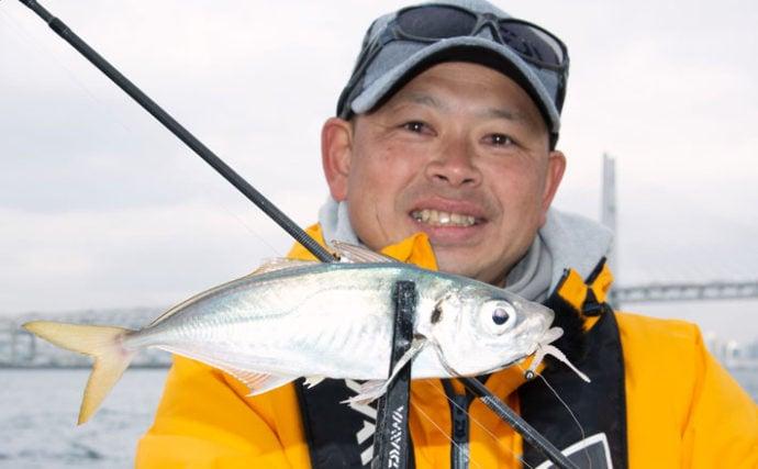 東京湾バチコンアジング コマセで寄せてワームで釣る?【渡辺釣船店】