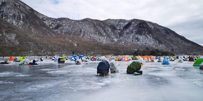 解禁3日目の『氷上ワカサギ』釣りで13.5cm頭に77尾【赤城大沼】