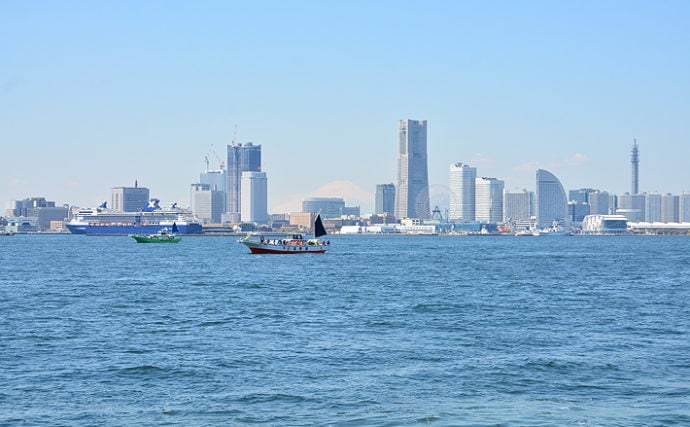 違反すると逮捕される可能性も 関東沿岸3県1都の海釣りルールを知ろう