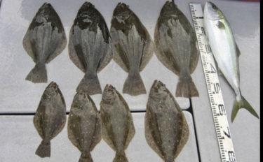伊良湖沖の泳がせ釣りで船中ヒラメ8匹 ベイト不在で苦戦【直栄丸】