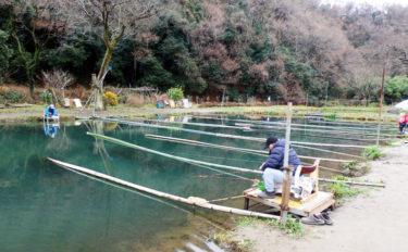 今週のヘラブナ推薦釣り場【神奈川県・上大島ファミリー釣り場】