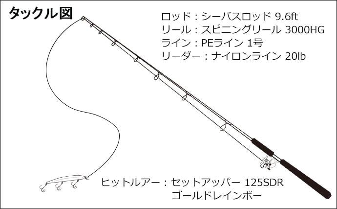 アフター狙いシーバスゲーム イナっ子パターン攻略で50cm【神崎川】