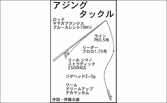 冬の陸っぱりライトゲーム本番 アジ&メバル両本命を手中【三重】