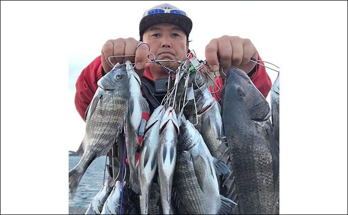 クロダイ狙いウキダンゴ釣りで44cm頭に本命連発【静岡県・浜名湖】
