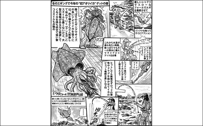 【九州2020厳寒期】アオリ狙いの陸っぱりエギング攻略法 1kg超も視野