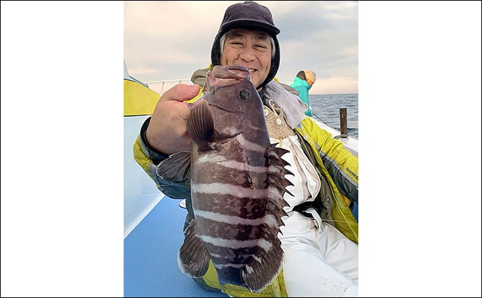 外房エリアのマハタ好調 イワシ泳がせ釣りで2.6kg頭に6尾【春日丸】