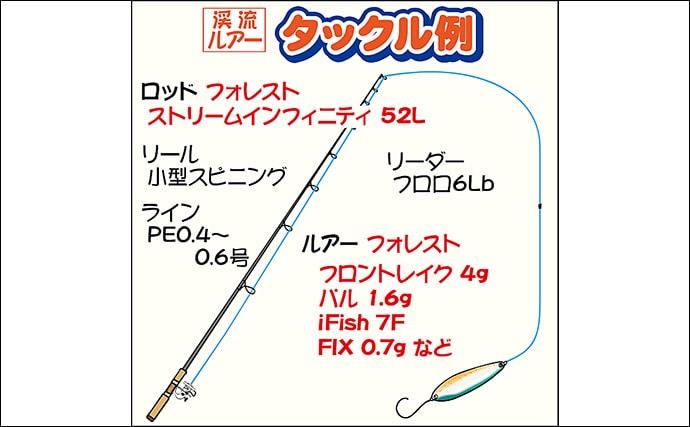 遊漁用に品種改良されたニジマス『ハコスチ』の強引を満喫【神流川】