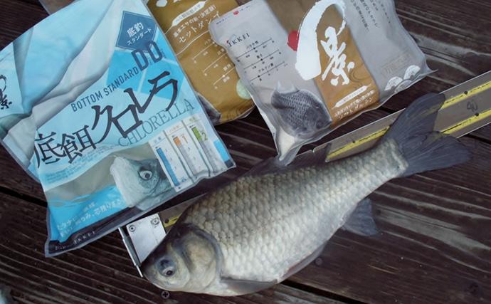 管理釣り場で38cm「新ベラ」手中 少ないアタリをものに【FC竹の内】