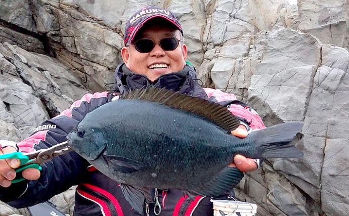 磯フカセ釣り大会で食い渋りの中40cm超え本命グレを手中【徳島・伊島】