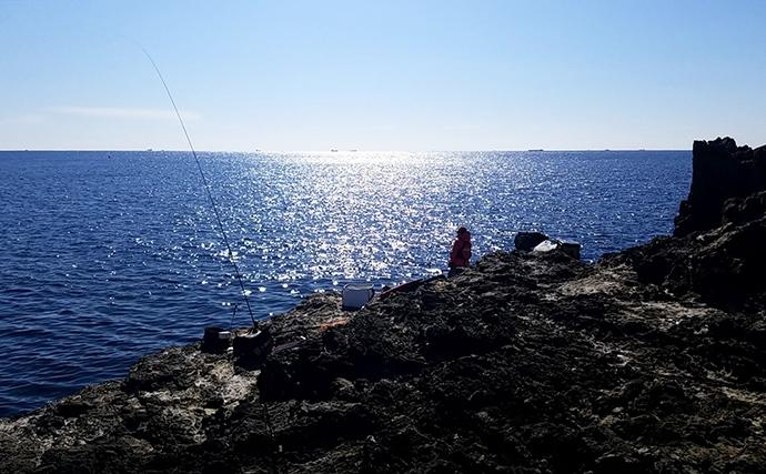 磯のフカセ釣りは寒グレ佳境 向こうアワセで36cm【和歌山・見老津】