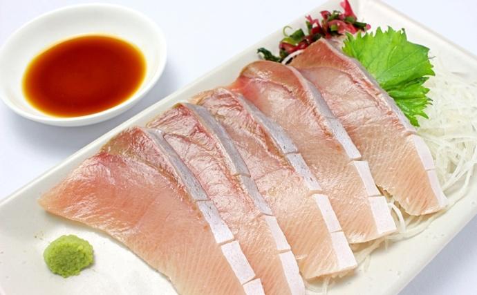 暖冬の影響で価格が高騰するサカナ3選 フグ大発生でアジの漁獲が減少?