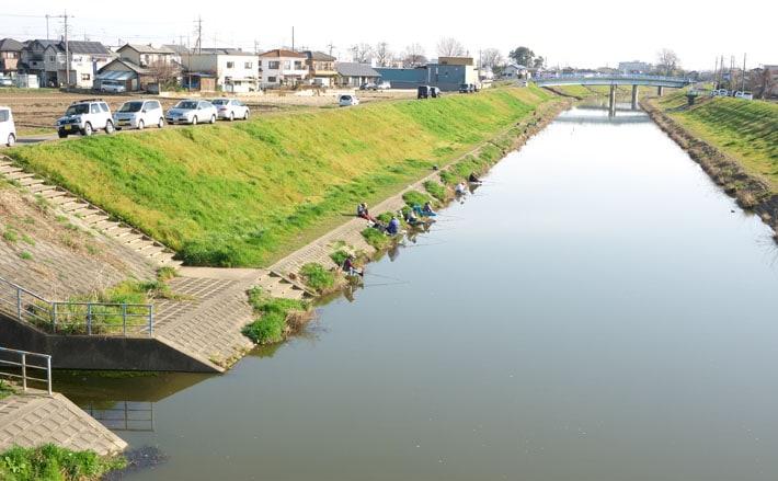新河岸 川 釣り