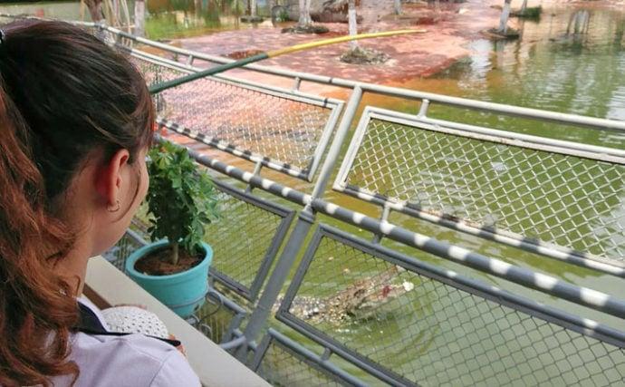 GW旅行にベトナムの「ワニ釣り」はいかが? 家族釣れでも安全に満喫