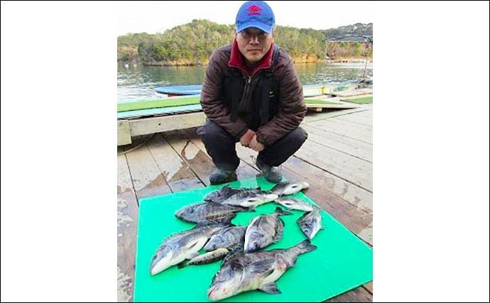 【三重県】イカダ&カセ最新釣果 各地で年無しクロダイ&アオリが好調