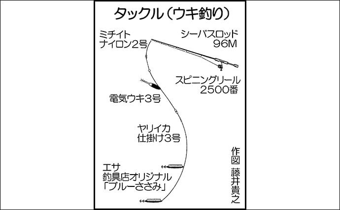 エサ巻きエギング&ウキ釣りの両刀でヤリイカ10尾手中【山口・青海島】