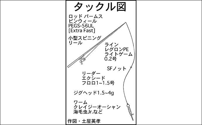 波止ライトゲーム賑やか 新子タチウオにセイゴにメバル【名古屋港】