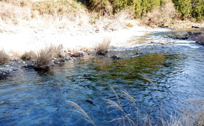 渓流ルアーフィッシングでアマゴ6尾 放流エリア中心にヒット【神崎川】
