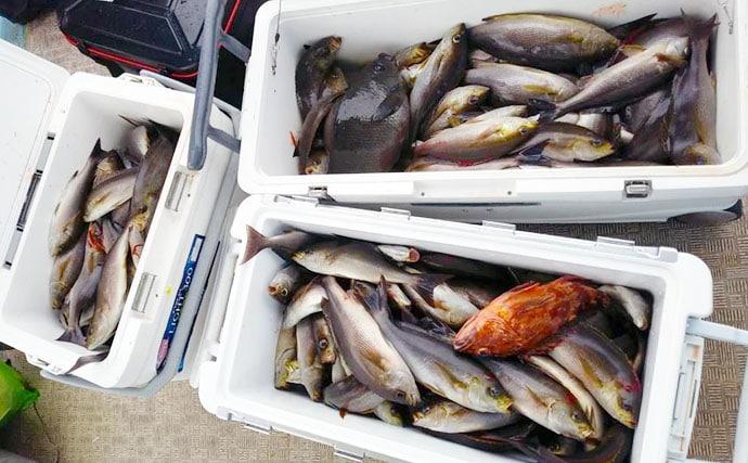 【玄界灘】沖のエサ釣り最新釣果 終盤戦のメダイ五目で多彩釣果