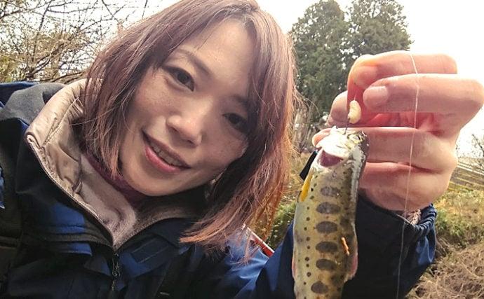 人生初の渓流エサ釣りで本命ヤマメ手中 ブドウ虫にアタリ【岩岳川】