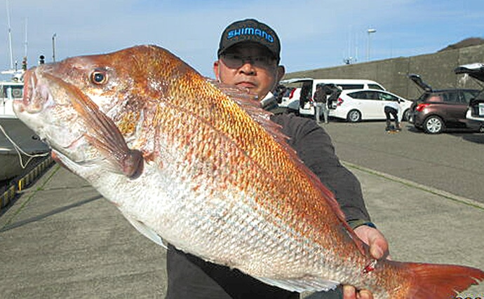 【関東2020春】コマセマダイ釣りをおさらい:乗っ込みがスタート