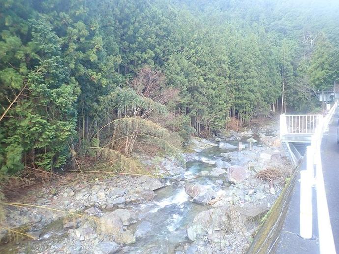 解禁日の渓流でルアー釣行 放流&天然モノ両者を満喫【奈良・宗川】